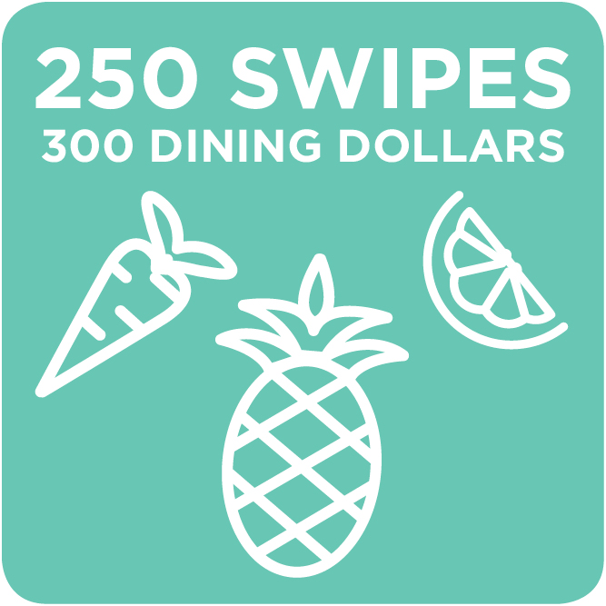 250 Swipes + 300 Dining Dollars