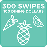 300 Swipes + 100 Dining Dollars $2,425.00